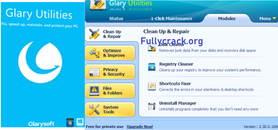 Glary Utilities Pro 5 Crack With License Key Full Version Download